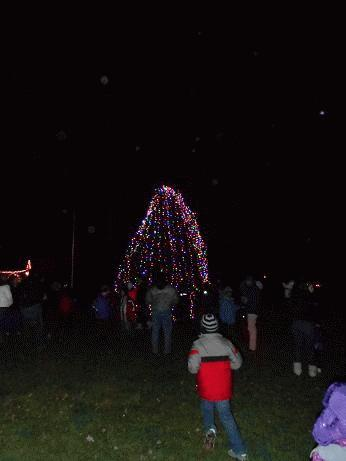 Tree Lighting 2012